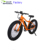 2018 Germany fancy new model mountain electric bicycle with hidden battery