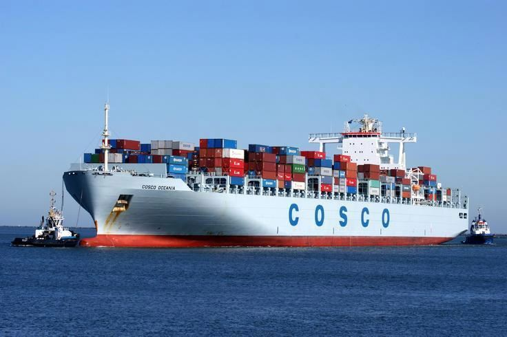 LCL&Container sea freight forwarder; consolidation sea shipping service to Buenos Aires