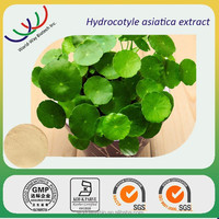 Free samples centella asiatica extract , factory supply high quality 10%-90% asiaticoside centella asiatica extract