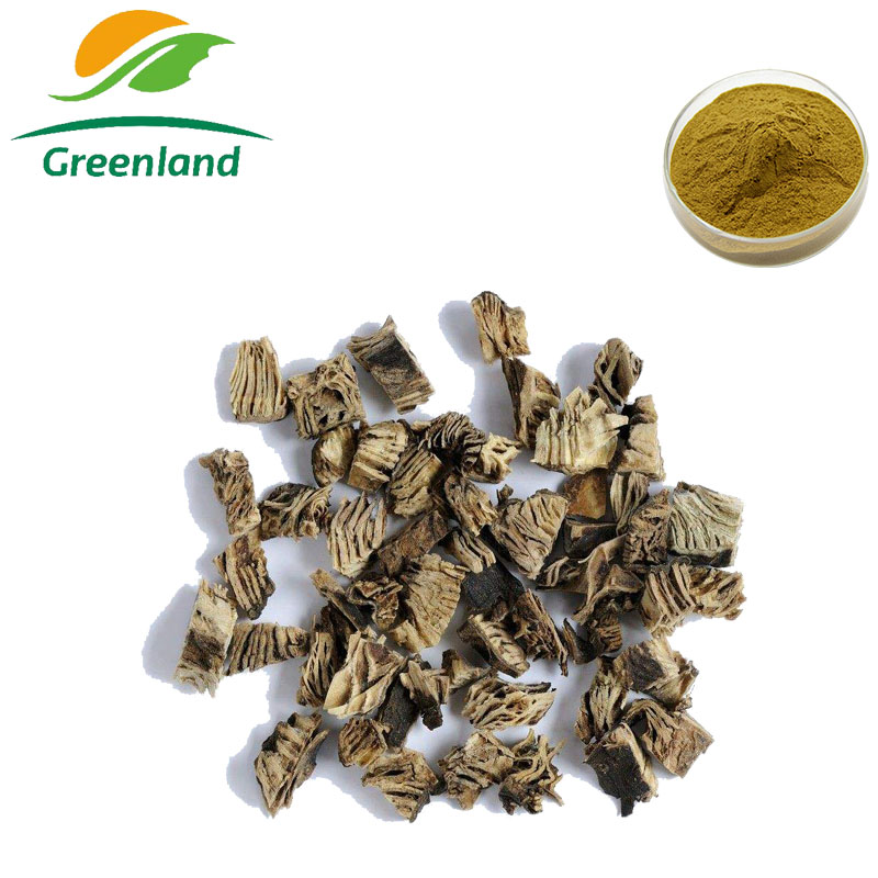 Factory Price Herbal Extract Actaea racemosa Cimicifuga Racemosa Extract Black Cohosh Extract