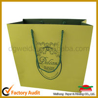 2013 Newest Bao Long Printing Paper Bag for Clothes