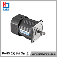 Low Rpm Reversible Ac Motor Electric Andiron Motor