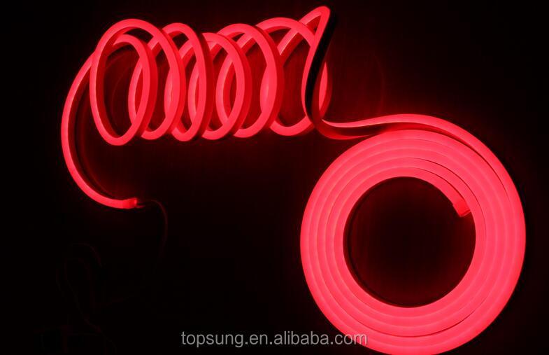 Chasing neon Flex (8).jpg