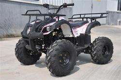Chain Drive Transmission System and EPA Certification quad 125CC atv