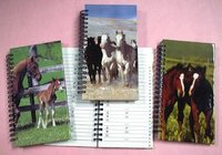Address Book With Horse Design