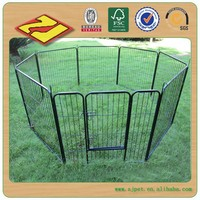 Steel structure dog run DXW009 (18 years professional factory)