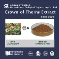 best price pure natural crown of thorns extract powder