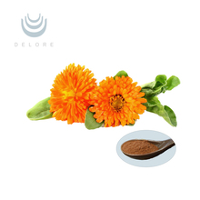 Free sample marigold Extract Cas no.127-40-2 producer lutein 5%