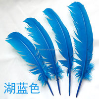 Factory Supply DIY Beautiful Long Bulk Turkey Wing Feather