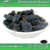 Ribes Nigrum Extract, Black Currant Extract , Blackcurrant Extract
