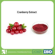 Organic sugar free Phytoform cranberry fruit for uti extract powder of 25%procyanidine(OPC)