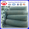 /product-detail/china-factory-sells-hot-dipped-pvc-coated-galvanized-hexagonal-wire-mesh-manufacturer--60063269358.html