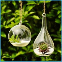 Nice geometric glass terrarium for home decor clear glass bubble ball