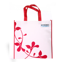 Germany Quality Promotional Bag Non Woven