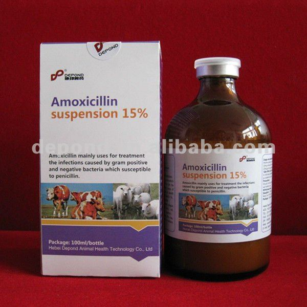 Amoxicillin injection 15% animal antibiotics sale