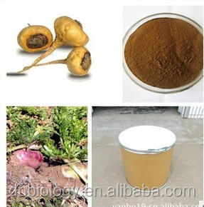 Men sex powder Maca extract Sex powder 20 to 1 A Herb Medicine To Enlarge Penis