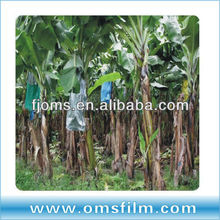 blue porous agricultural plastic film for banana protective