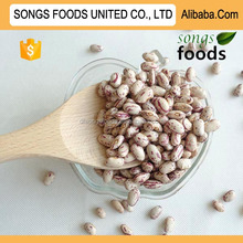 types of kidney beans in China Origin