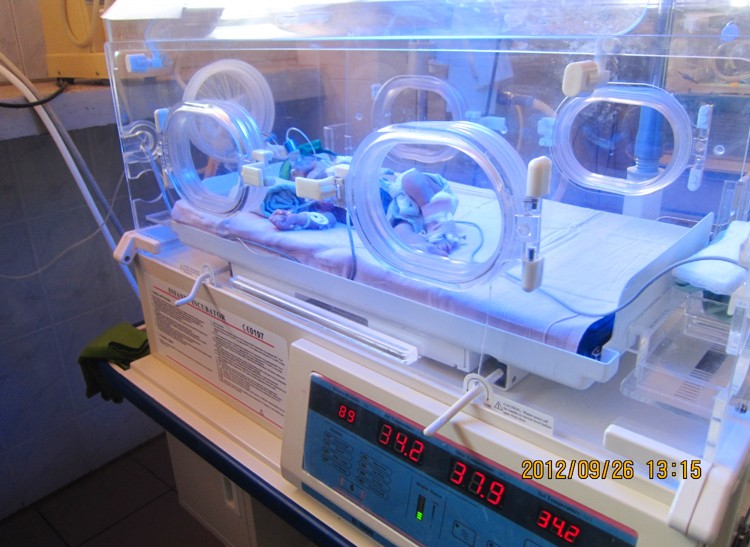B3000 Best Selling Phototherapy Lamp Unit Neonatal Baby Newborn Infant Incubator