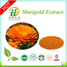 Gold Marigold Flower Extract Powder / Marigold for animal feed / Chicken Feed Marigold Powder