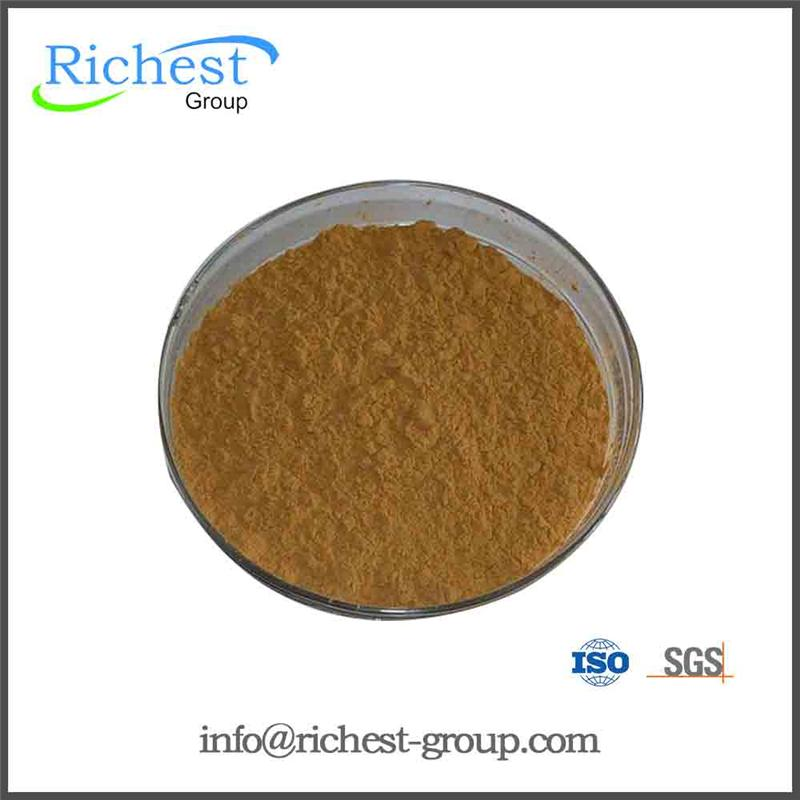 High quality and factory supply ivy leaf extract with free sample