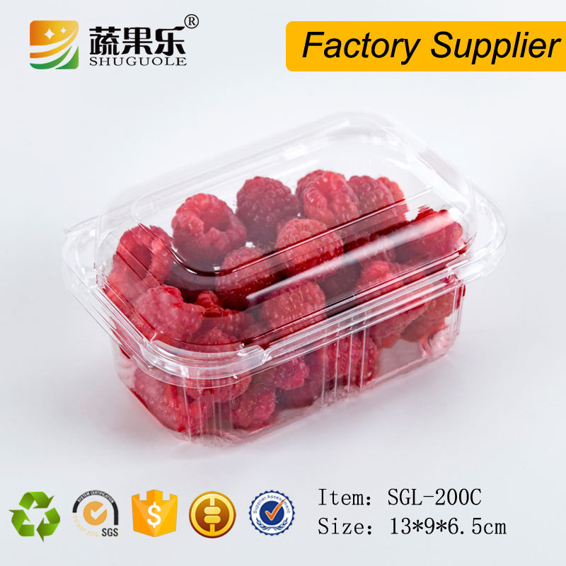 Safe food grade plastic fruit tray