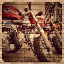 SKYTEAM 50cc&125cc monkey bike monkey motorcycle (EEC EUROIV EURO4 APPROVED)