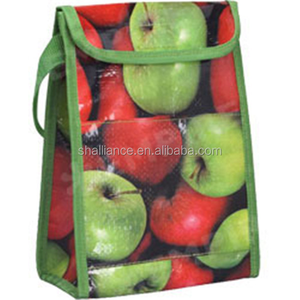 Insulated Lunch Cooler Bag Zero Degrees Inner Cool Bag