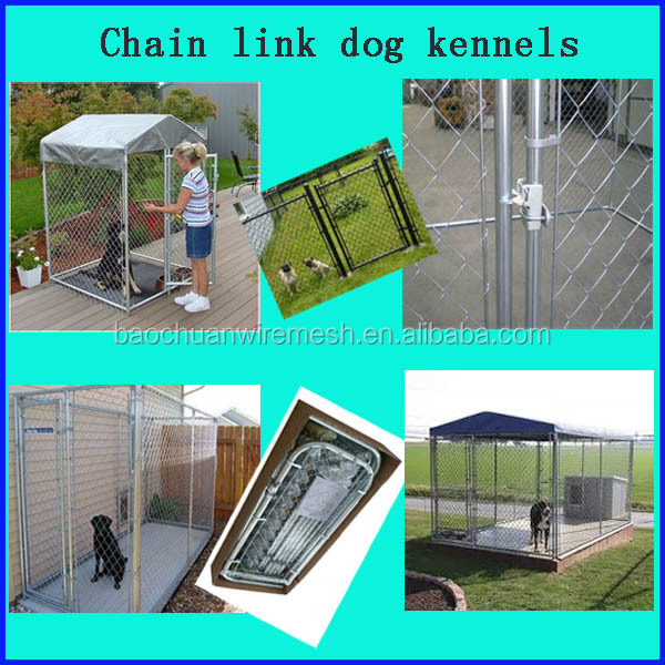 Chain link dog kennels.jpg