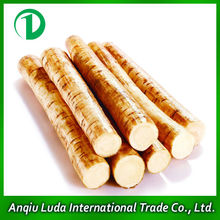 Burdock Supplier