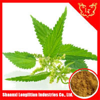 100% Natural 45% Beta sitosterol / Brown Powder Sting Nettle Extract