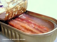 CANNED ANCHOVY