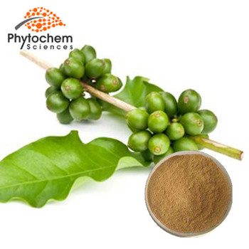 Weight Loss Bulk Price of Green Coffee Bean Extract Powder