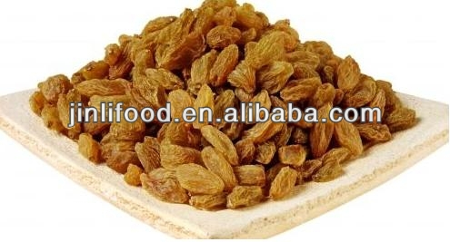 iranian raisin delicious high quality cheap