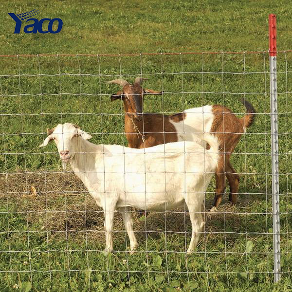 2.5mm 3mm wire weave Field fencing goat farming ranch supply fence used livestock panels