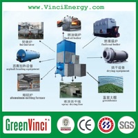 China Greenvinci biomass wood chips gasifier furnace for industrial steam boiler widely used in Pakistan