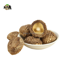 Best selling dried shiitake mushroom exporter and distributors