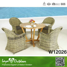 Professional Outdoor Rattan/Wicker Sofa Set
