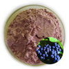 Natural Fruit Nutritional Blueberry Extract Blue Berry Fd Powder