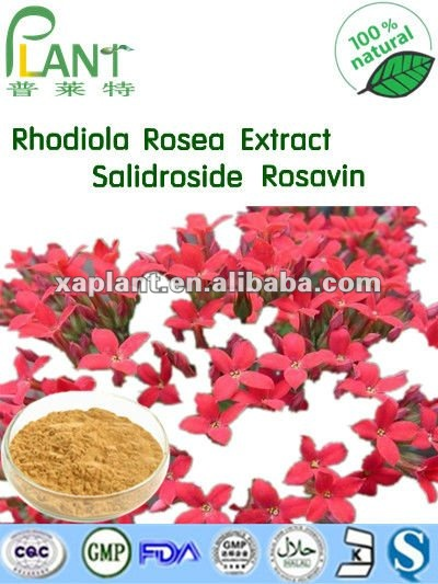 GMP Manufacturer Water Soluble Salidroside Rosavin Powder Rhodiola Rosea Extract