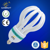 Lightweight Ce,Rohs Certified T2 Energy Saving Bulb Wholesale