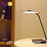Superior quality floor and wall reading lamp