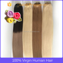 Free sample hair bundles clips on double weft human hair tangle free remy clip in hair extension 220 grams