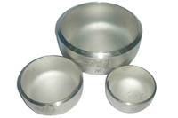 Steel astm/asme a403 end stainless cap