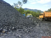 high-quality and high-purity Coal