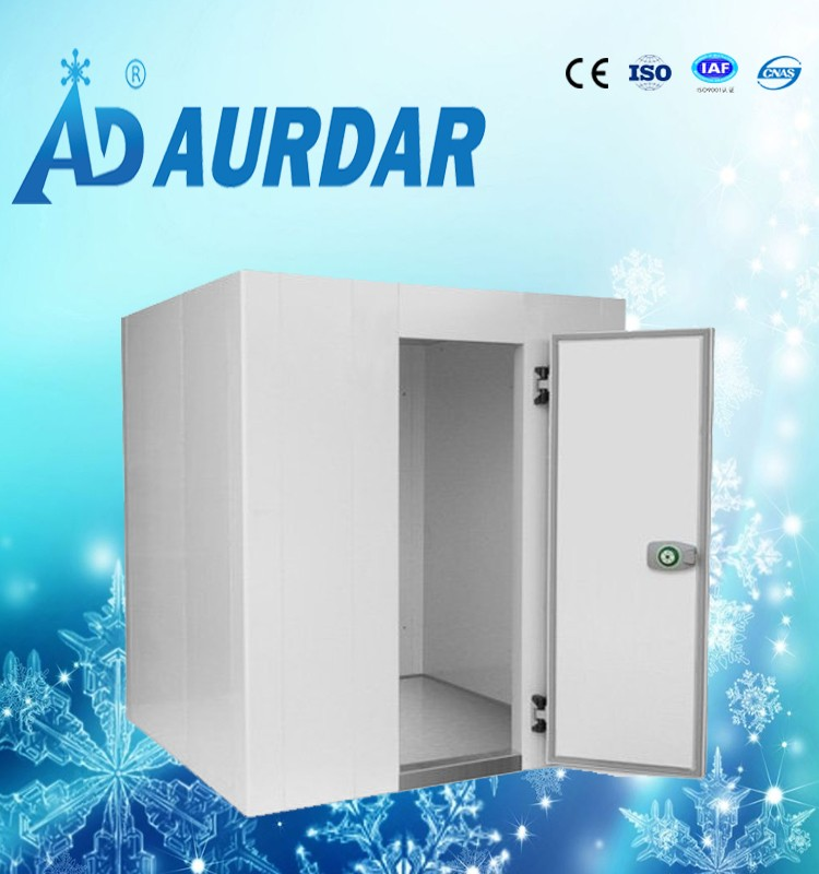 New style latest cheese cold store/cold storage compressor/cold room