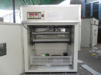 Manufacture of egg incubator kerosene operated
