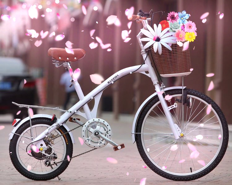 "24"" beach cruiser cycling_colorful beach cruiser for woman_lady cruiser bike bicycle"