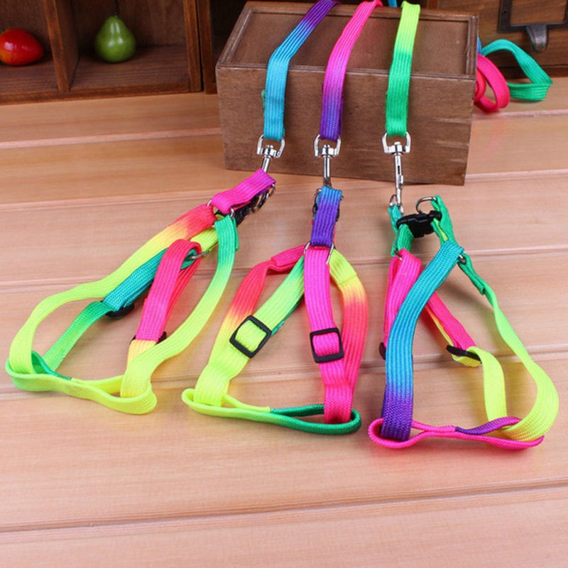 1 PCS Adjustable Rainbow color Pet Dog Leash Small Puppy Cat Rabbit Kitten Nylon Harness Collar Lead