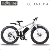 MOTORLIFE/Lithium battery powered fat tire electric bicycle, 48V 750w electric mountain bicycle, mountain electric bicycle